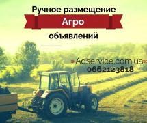 Manual placement of agro ad. To place agro ad