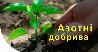 """Nitrogen fertilizer """"Urea"""" N-46.2% (Urea) DneprAzot Wholesale"""