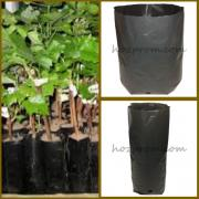 Пакеты для саженцев Купить горшки для рассады Выращивание кустар