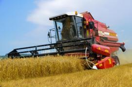 Прибирання зернових. Послуги комбайнів